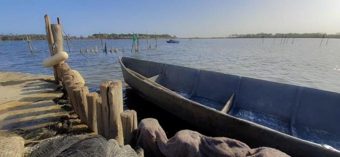 La photo du jour : à bord d'une barque de l'étang de Chjurlinu