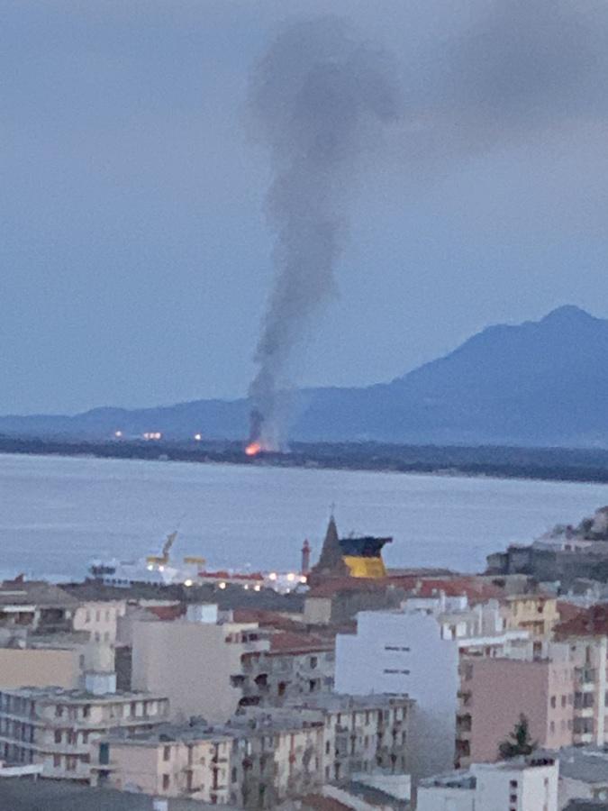 Borgo : deux hectares de végétation partent en fumée