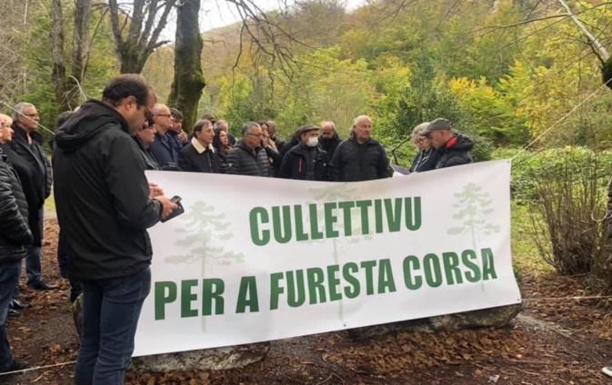 """U cullettivu per a furesta corsa veut remettre """"la forêt au centre du débat public"""""""