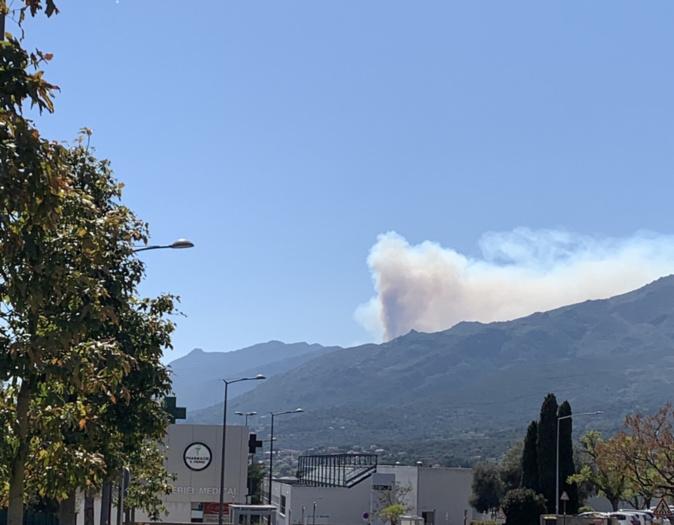 10 hectares de végétation inaccessibles sont déjà partis en fumée entre Scolca et Volpajola