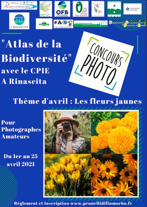 Prunelli-di-Fiumorbu : Un concours photo lancé sur le thème de la biodiversité