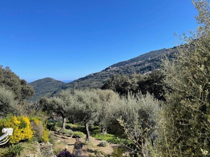 La météo du mercredi 7 avril 2021 en Corse
