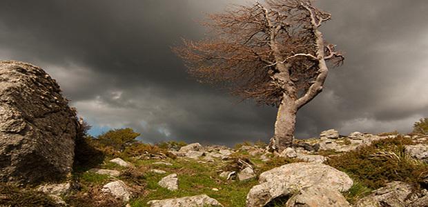 Alerte aux vents violents sur la Corse