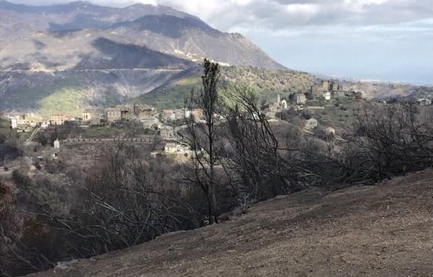 Prévention des incendies : Le Fium'Orbu Castellu va créer des zones de protection plus larges autour des villages