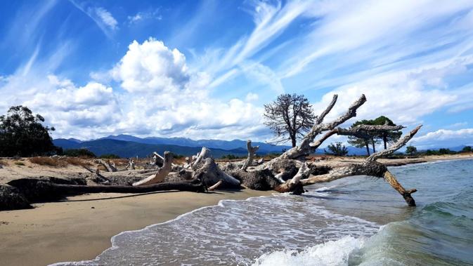 La photo du jour : la plage de Solenzara, les montagnes de Ventiseri