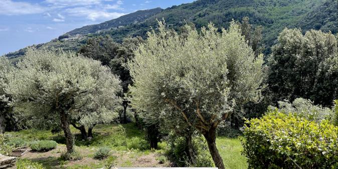 La météo du jeudi 20 mai 2021 en Corse