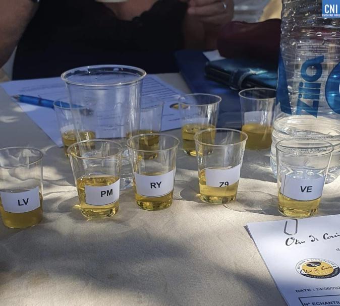 13ème concours d'huile d'olive au parc de Saleccia : l'or pour Olivier Morati et Rioli & fils