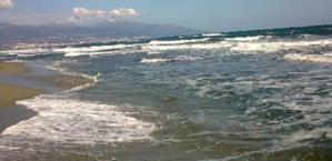 Borgo : Un octogénaire décède dans l'eau