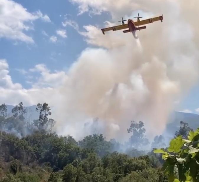 Incendie dans la plaine d'Oletta : 7 hectares détruits, une enquête ouverte