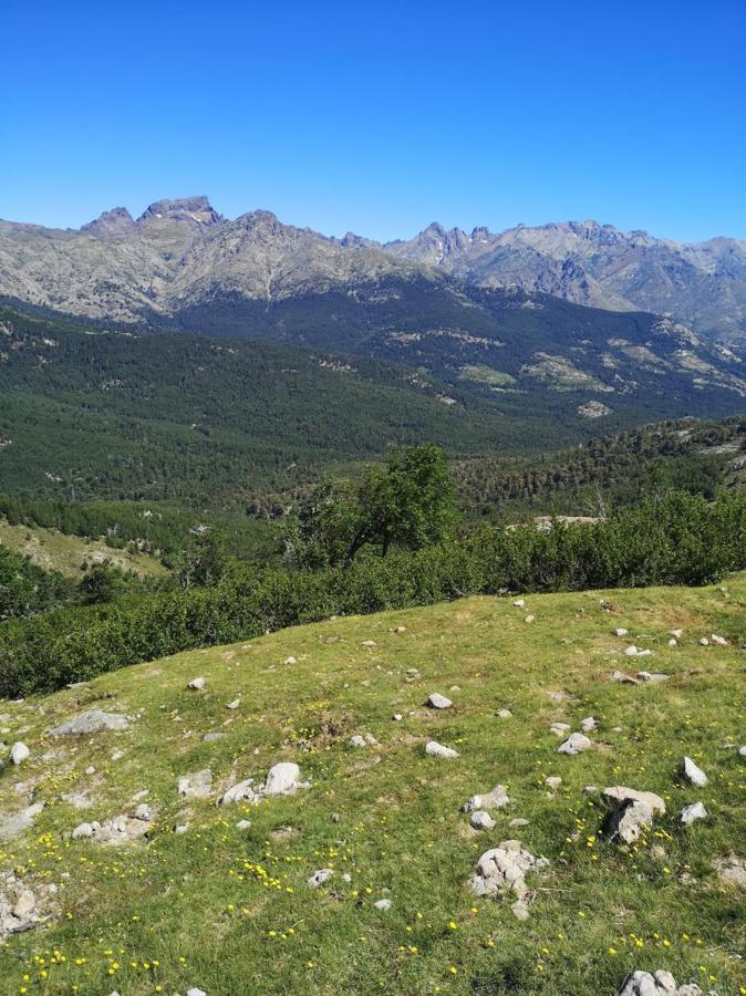 L'ascension depuis le col de Verghio vers le Lac de Ninu offre une vue époustouflante sur le toit de la Corse dont la majestueuse Paglia Orba. (Stéphanie Ingram)