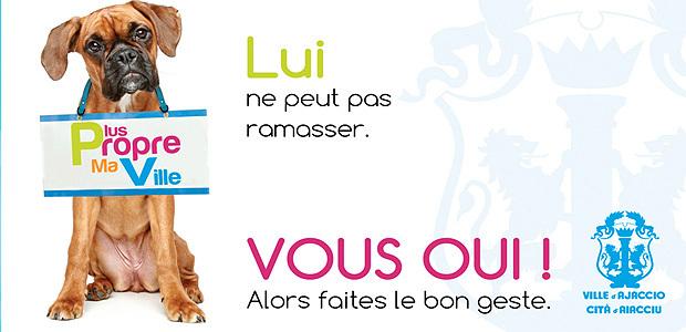 """Ajaccio dit """"stop aux déjections canines"""""""