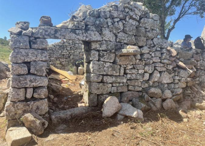 Rénovation des bergeries de Pian'di Selva, un projet agropastoral ambitieux à Arghjusta è Muricciu