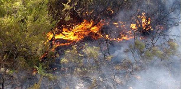 Loreto di Casinca : 1 ha détruit et deux mises à feu