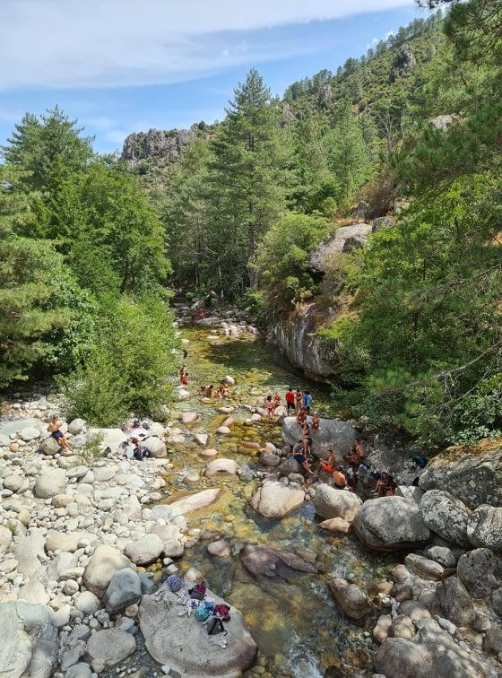 Les baigneurs sont nombreux à profiter de la fraîcheur de la Restonica. Crédits Photo : Pierre-Manuel Pescetti