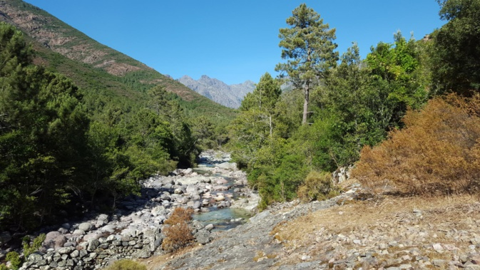 : Le ruisseau de Candella dans ke haut Fangu (Gerald Aprile)
