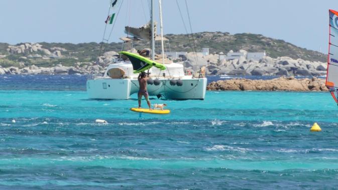 La photo du jour : Jack Russel windsurfeur à Bonifacio
