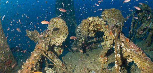La Barge de l'Insuma (MFP-366) repose elle sur un fond de 70 mètres (Photos Stéphan Le Gallais)