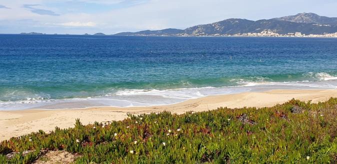 Depuis la plage d'Agosta jolie vue sur Ajaccio et les Sanguinaires. (Photo Lionel Santoni)