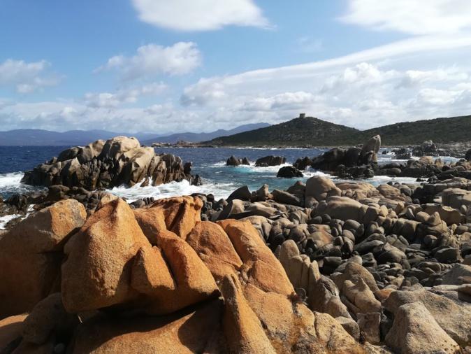 La photo du jour : de la tour de Campumoru  à la jolie plage de Cala d'Agulia