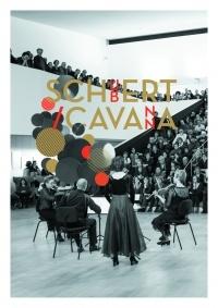 Dimanches en musique au Palais Fesch : Schubert interprété par Ars Nova