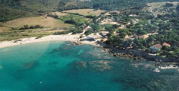 Portigliolo : Un bébé Rorqual s'échoue sur la plage
