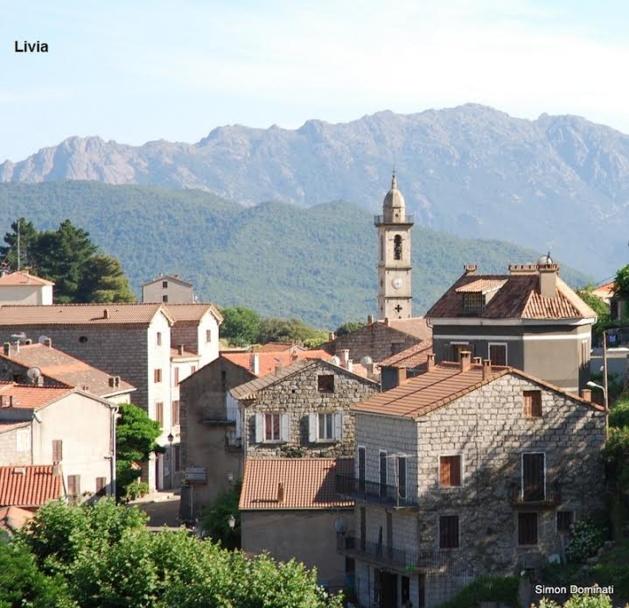 Usu di nanzi in Livia e altrò : Una vita di purceddu
