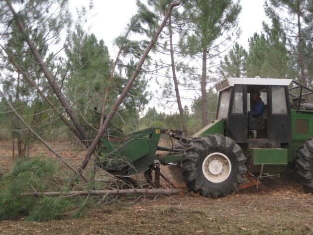 Le broyeur marteau une mécanisation indispensable pour traiter les 5 hectares de terrain communal actuellement travaillés. (Photo DR).