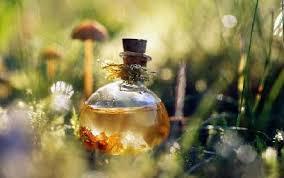 Les huiles essentielles ou une nouvelle philosophie de la vie