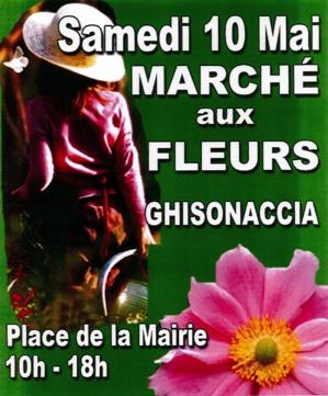 Marché aux fleurs à Ghisonaccia