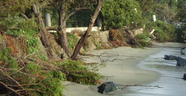 """Erosion du littoral : """"Envisager une gestion collective du problème"""""""