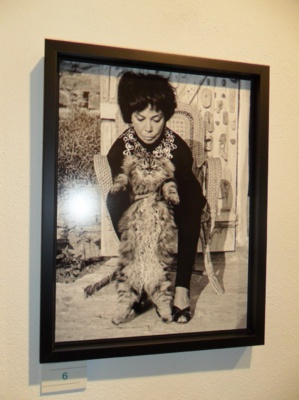 Bastia : Leonor Fini et Louis Schiavo à l'honneur au musée