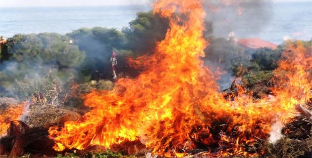 Incendies : Plusieurs mises à feu et 2 ha détruits à Vescovato