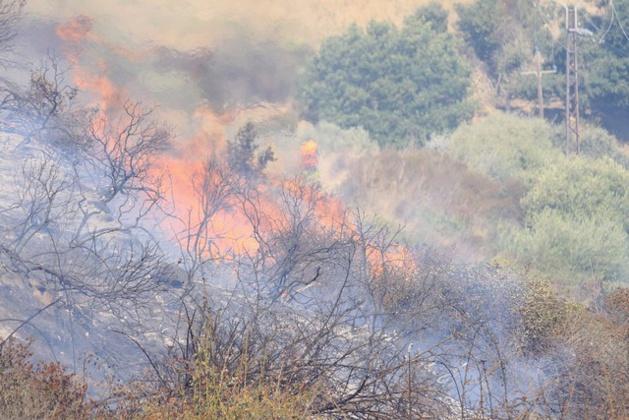 L'incendie d'Occiglioni fixé. Bilan provisoire  : 14 hectares