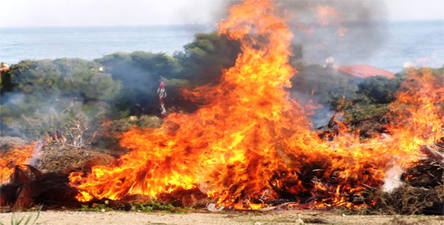 Incendies : Des foyers à Poggio-di-Nazza, à Corte et à Cognocoli