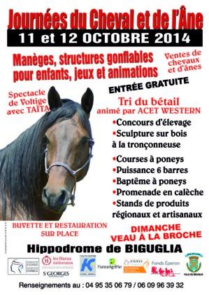 Biguglia : Les journées du cheval et de l'âne