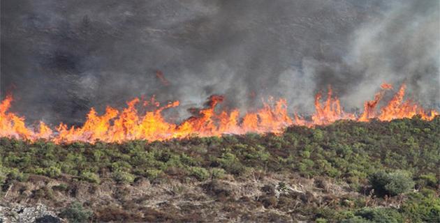 L'incendie de Calenzana a parcouru près de 100 hectares