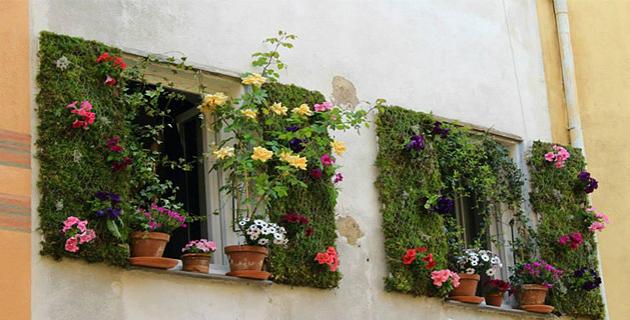 La fenêtre gagnante d'Aurelien Duboc