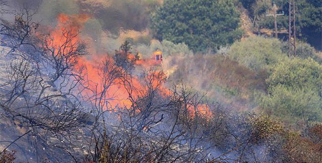 Quadruple mise à feu dans la forêt de l'Ospedale