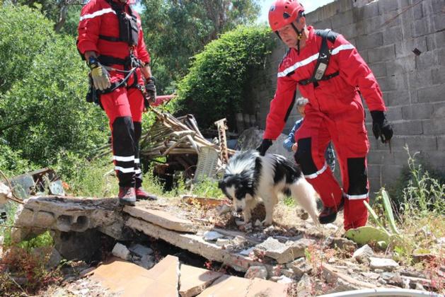 Une vingtaine de victimes - imaginaires - à Suare à la suite d'un séisme