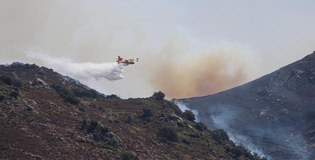 Parti de Zilia le feu s'est dirigé vers Feliceto et Muro. Bilan provisoire : 32 hectares