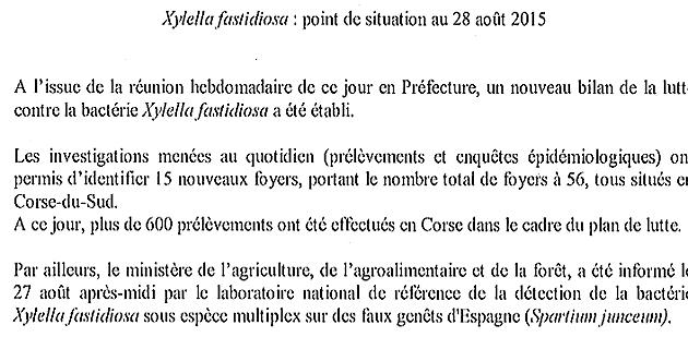 Xylella Fastidiosa : 56 foyers récensés en un mois...