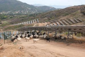 La vocation agricole de la zone préservée