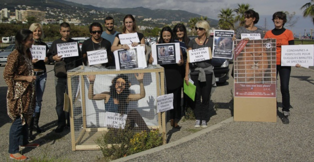 "Global Earth Keeper : ""La Corse dit non aux cirques avec animaux"""