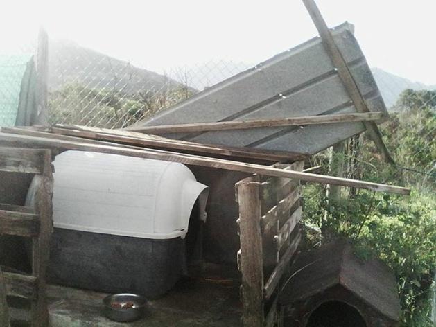 Le refuge SPA de Calvi victime de la tempête