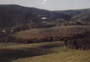 """""""Région de Sartène, près de Serragia/Rughjone di Sartè, Vicinu à Serraja"""", Corse 2010 - Maddalena Rodriguez-Antioniotti"""