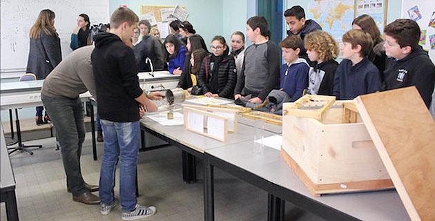 """Ajaccio : Au collège des Padule, l'""""Happy'Culture"""" vient accompagner les élèves dans l'apprentissage"""
