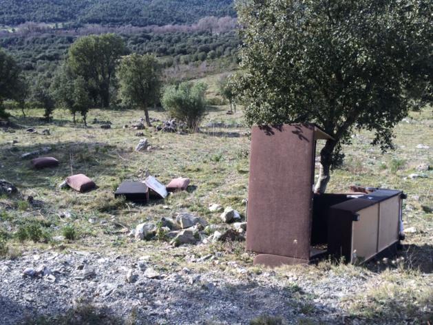 Balade dans la nature : Sangliers abattus et abandonnés, divan à l'air libre…