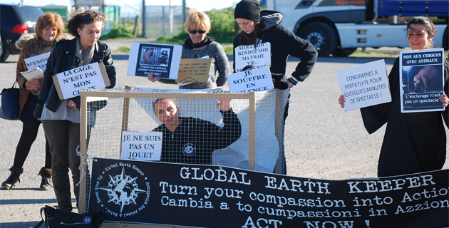 Bastia : Le GEK Corse manifeste contre les animaux en cage