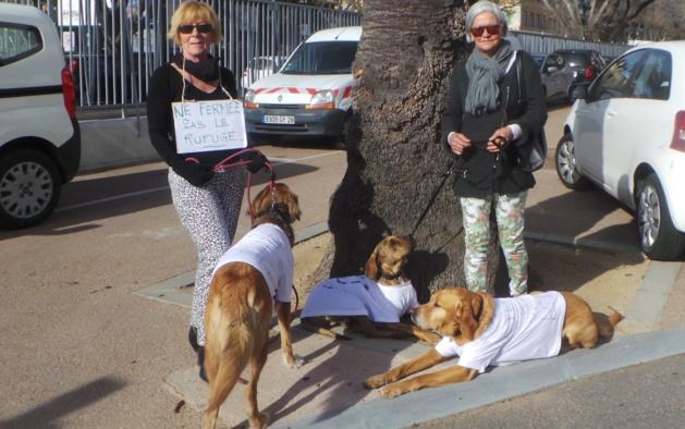 Bastia : Le coup de colère des amis des animaux à la CAB