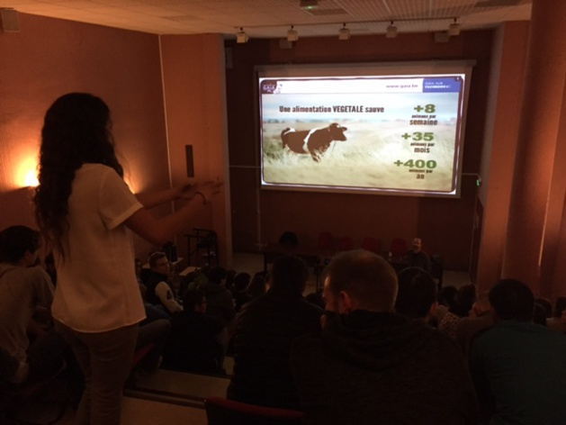 Antispécisme : L'éthique animale passionne les lycéens corses